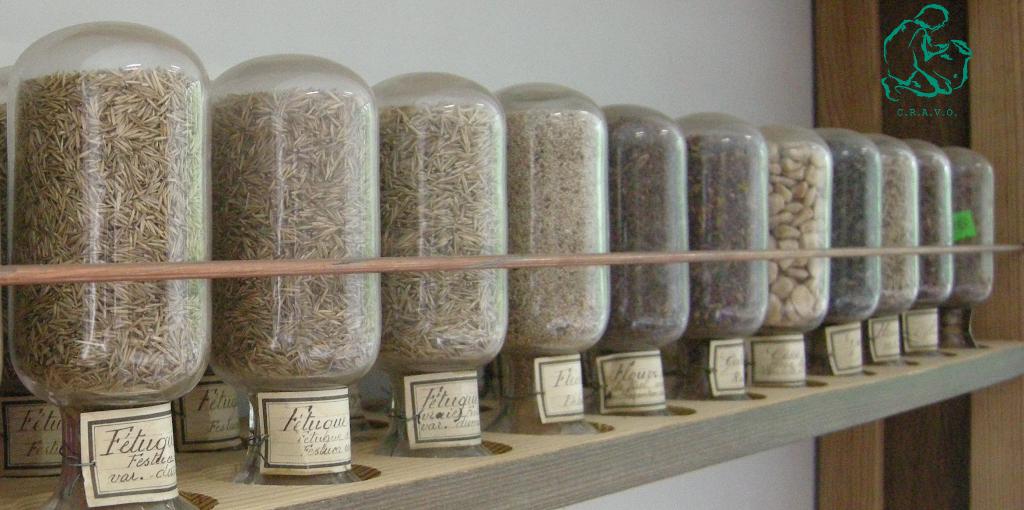 étagère des céréales